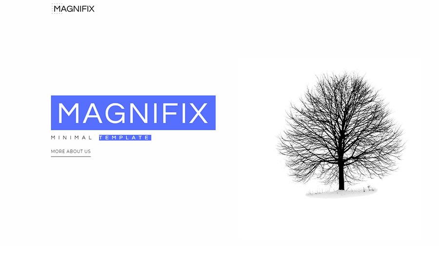 Magnifix - Creative Minimal Elementor WordPress Theme