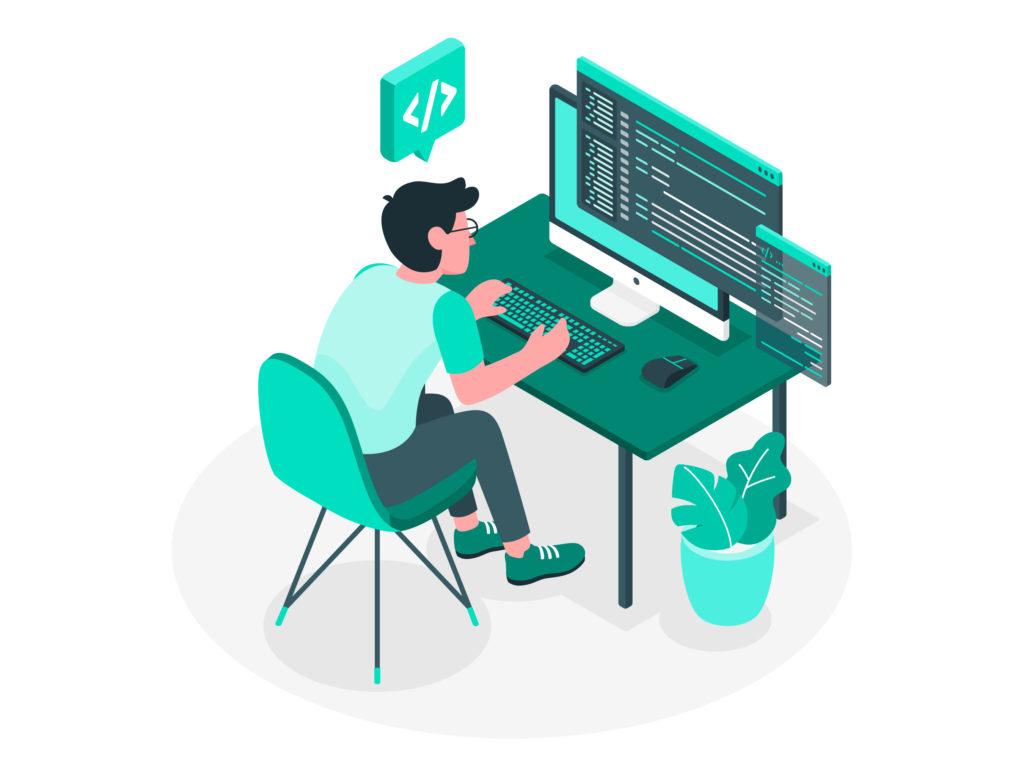 vuejs developer